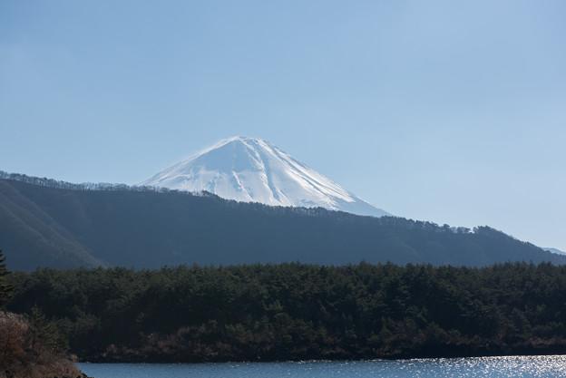 富士山【西湖からの眺め】2
