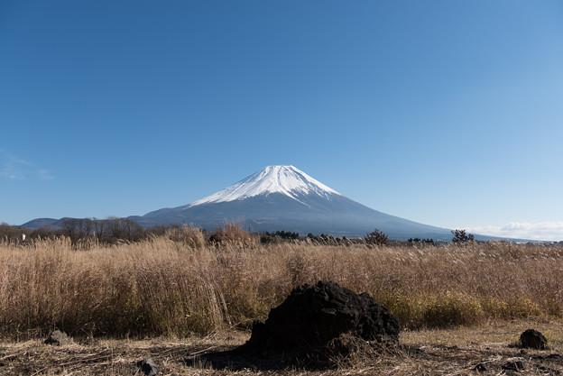 富士山【朝霧高原からの眺め】3