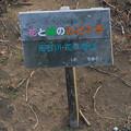Photos: 花桃の丘の看板