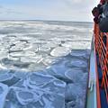 写真: 紋別流氷 (1)