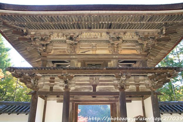 IMG_9693圓成寺・楼門(重要文化財)