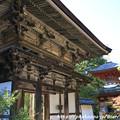 Photos: IMG_9705圓成寺・楼門(重要文化財)と多宝塔