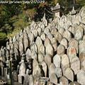 Photos: IMG_9740正暦寺・僧侶の墓石群