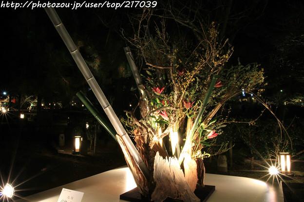 IMG_2420京都・東山花灯路2017・前期・現代いけばな展