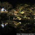 Photos: IMG_2447京都・東山花灯路2017・前期・円山公園