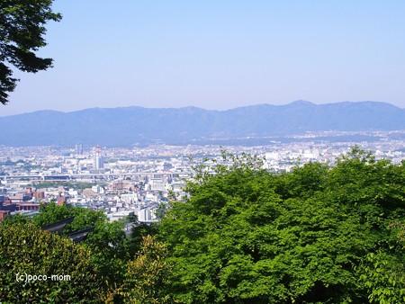 京都伏見稲荷2014年05月04日_P5040727