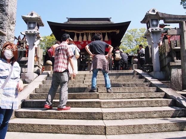 京都伏見稲荷2014年05月04日_P5040772