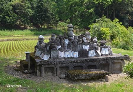 長浜 大聖寺不動堂への路傍の石仏群  DSC_0032