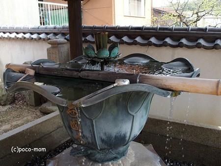 西國寺 西国寺 P4120213