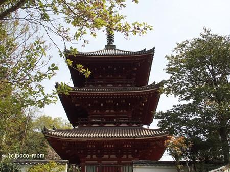 西國寺 西国寺 P4120240