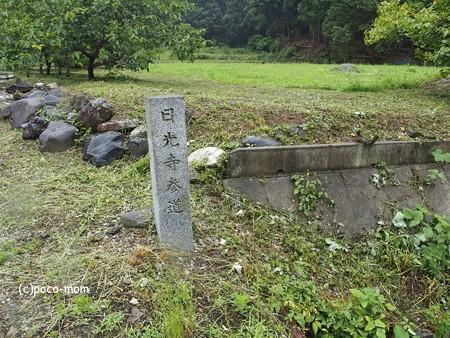 米原 観音の里 日光寺 P6190152