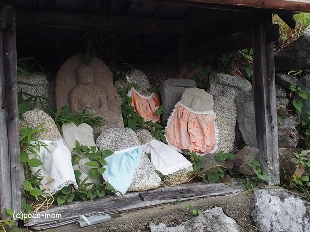 米原 観音の里 日光寺 P6190184