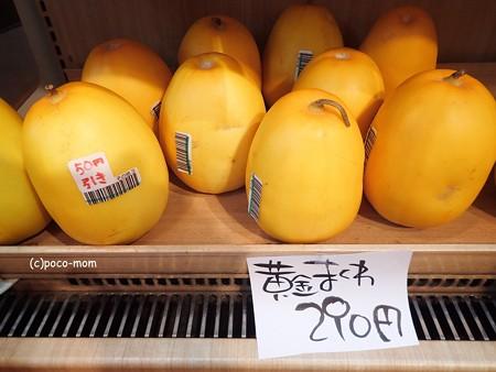 東京 奈良・まほろば館 P7310690