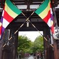 Photos: 石山寺 P8270267