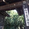 写真: 泉涌寺総門 PA160547