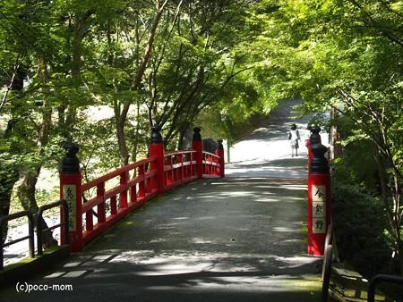 今熊野観音寺 泉涌寺塔頭 PA160593