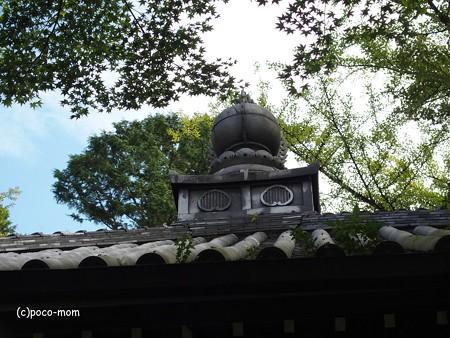 今熊野観音寺 泉涌寺塔頭 PA160612