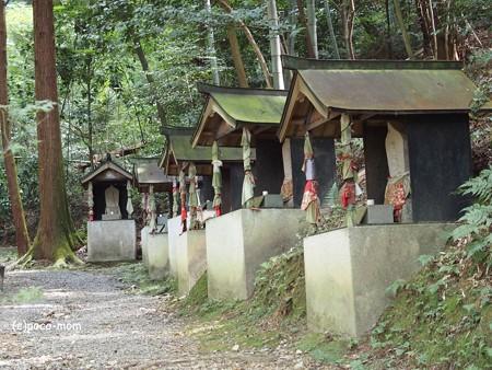 今熊野観音寺 西国三十三所霊場 PA160629