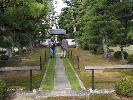 長浜 安楽寺 PA300066