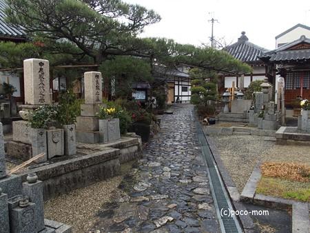 興善寺 P1221029