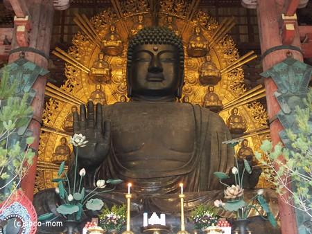 東大寺大仏殿 P1220958