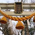 Photos: 2011年01月09日_DSC_0025