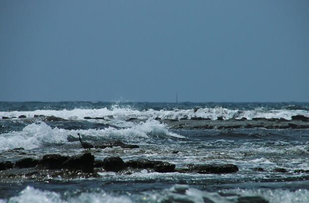 写真: 波しぶき