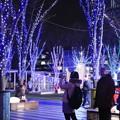 Photos: ケヤキ広場にて