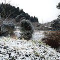写真: 宮崎市でも初雪3