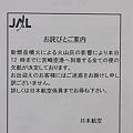 写真: 【2度目の爆発的噴火】宮崎市の様子7