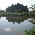 Photos: 柿果樹園隣接の池 (2)