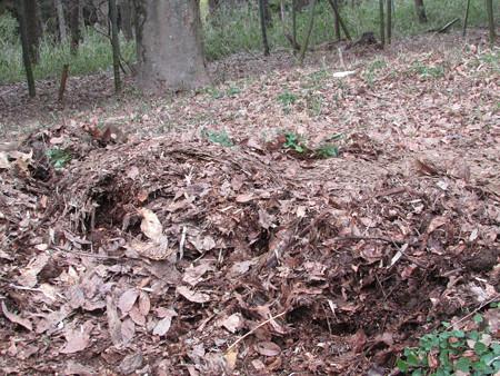 堆肥運び の巻