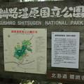 Photos: 釧路湿原国立公園