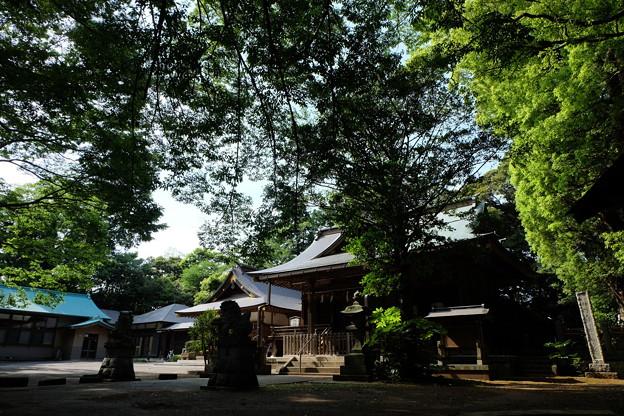 Photos: 神崎神社