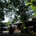 写真: 神崎神社