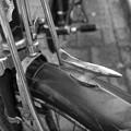 写真: 自転車のエンブレム