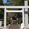 Photos: 茨城一の宮 大神宮 二の鳥居