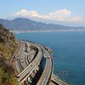 写真: 富士と駿河湾と東海道本線