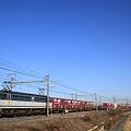 東北本線 東鷲宮-栗橋 貨物列車