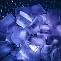 Photos: ice cube