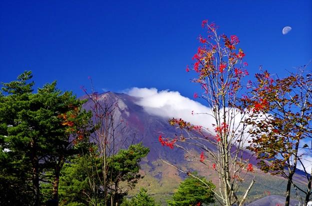 2014富士山麓の秋66「台風一過」