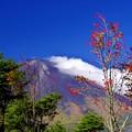 Photos: 2014富士山麓の秋66「台風一過」