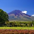 Photos: 2014富士山麓の秋71