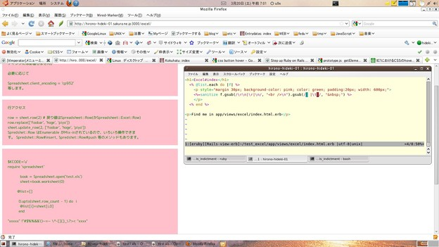 写真: spreadsheet_firefox_20100320