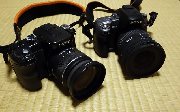 Photos: α100とα550