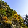 Photos: 落石防止と紅葉