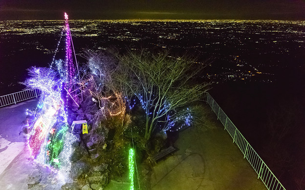クリスマスツリーと夜景