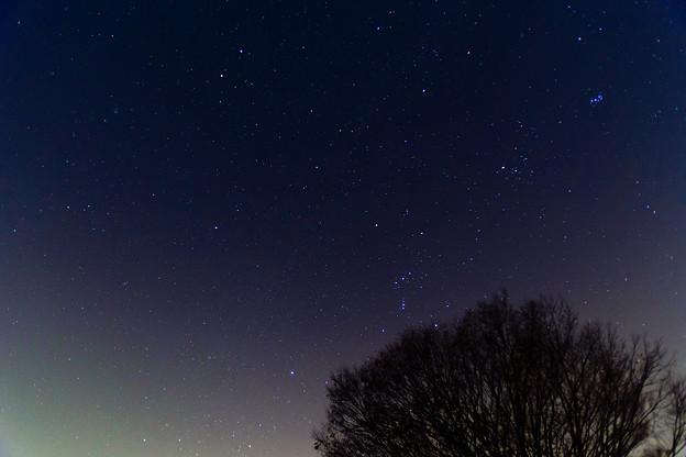 星は流れず・・・