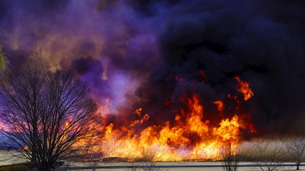 広範囲が一気に燃えます。