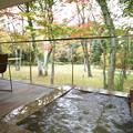 Photos: 森のレジデンス温泉露天風呂付きツイン